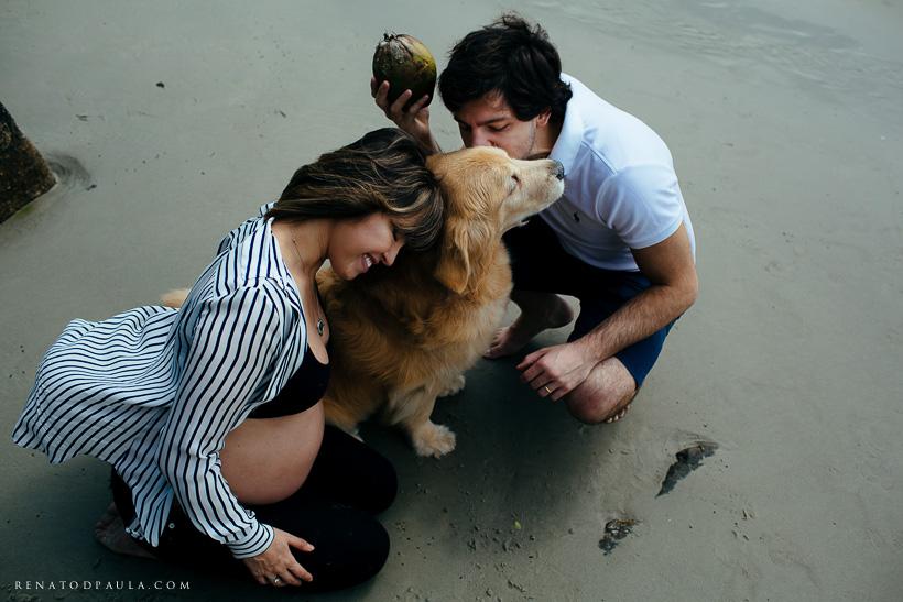 ensaio na praia com cachorros