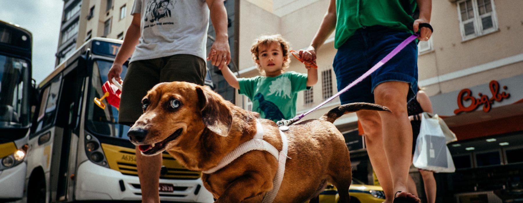 Um Dia na Vida dos Pires Thomé | Rio de Janeiro